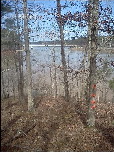 Lot 17 Block 1 Savannah Point